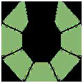CVCoin CVN Logo