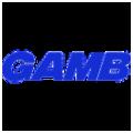 GAMB GMB Logo